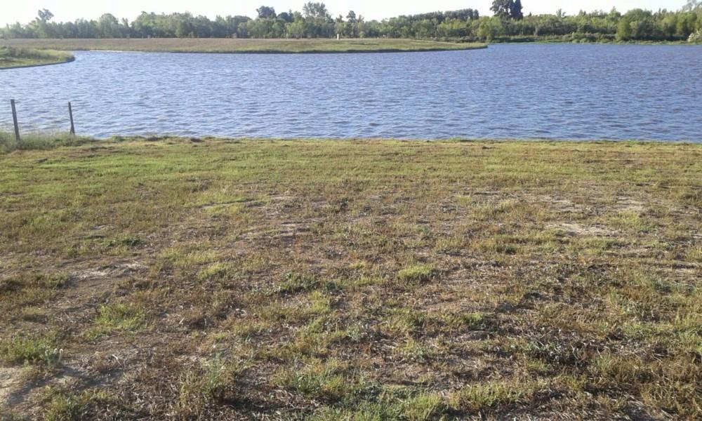 EL NAUDIR: Lote Con Costa De Agua Y Salida Directa Al Rio Lujan
